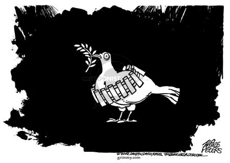 Frightened peace dove, with an olive branch in its mouth, stands wearing a belt of ammunition such as that worn by suicide bomber or homicide bomber.