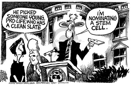 Mike Peters  Mike Peters' Editorial Cartoons 2005-07-22 Supreme Court