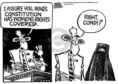 Mike Peters  Mike Peters' Editorial Cartoons 2005-08-26 Constitution