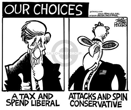 Our Choices.  Tax and Spend Liberal.  Attacks and Spin Conservative.