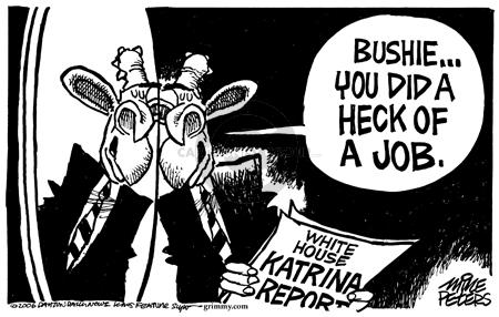 Cartoonist Mike Peters  Mike Peters' Editorial Cartoons 2006-02-26 natural disaster