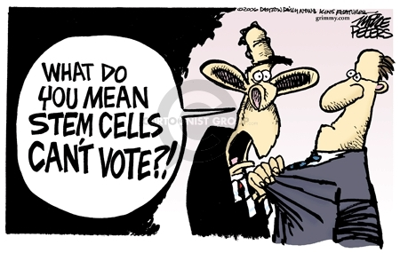 Mike Peters  Mike Peters' Editorial Cartoons 2006-11-10 voting rights