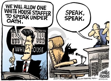 White House.  We will allow one White House staffer to speak under oath.  Speak, speak.