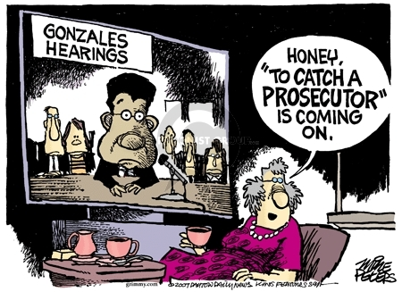 Cartoonist Mike Peters  Mike Peters' Editorial Cartoons 2007-03-31 congressional oversight