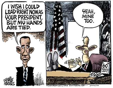Cartoonist Mike Peters  Mike Peters' Editorial Cartoons 2008-11-20 2008 election