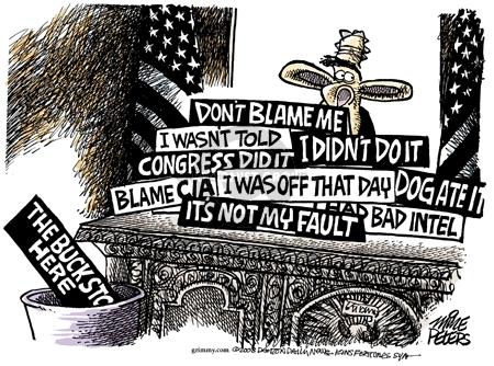 Cartoonist Mike Peters  Mike Peters' Editorial Cartoons 2008-12-03 fault