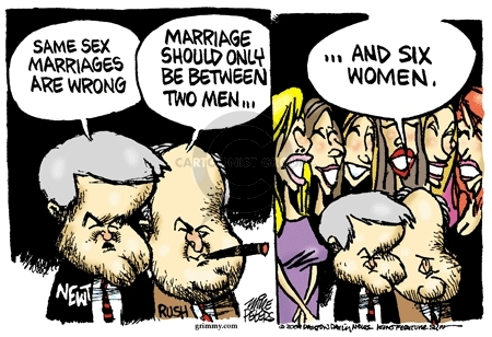 Cartoonist Mike Peters  Mike Peters' Editorial Cartoons 2009-05-27 Newt Gingrich