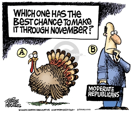Which one has the best chance to make it through November? A. (Turkey) B. Moderate Republicans.