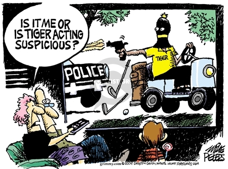 Mike Peters  Mike Peters' Editorial Cartoons 2009-12-01 automobile accident