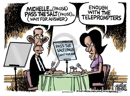 Cartoonist Mike Peters  Mike Peters' Editorial Cartoons 2010-01-27 Michelle Obama