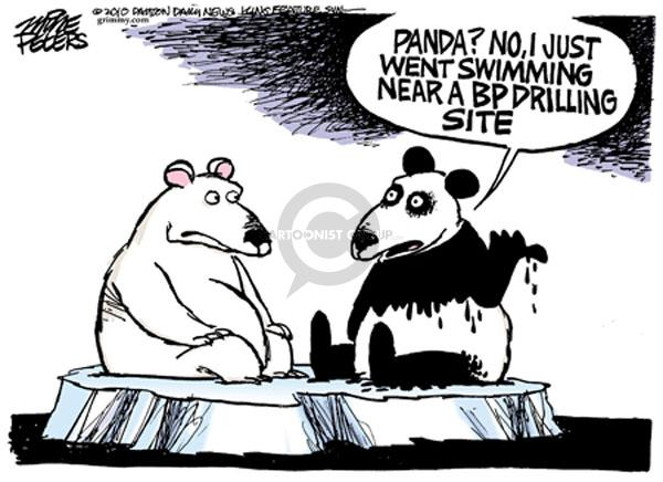 Panda? No. I just went swimming near a BP drilling site.