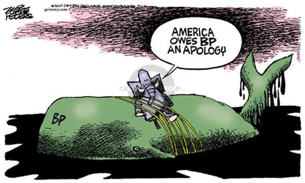BP.  America owes BP an apology.