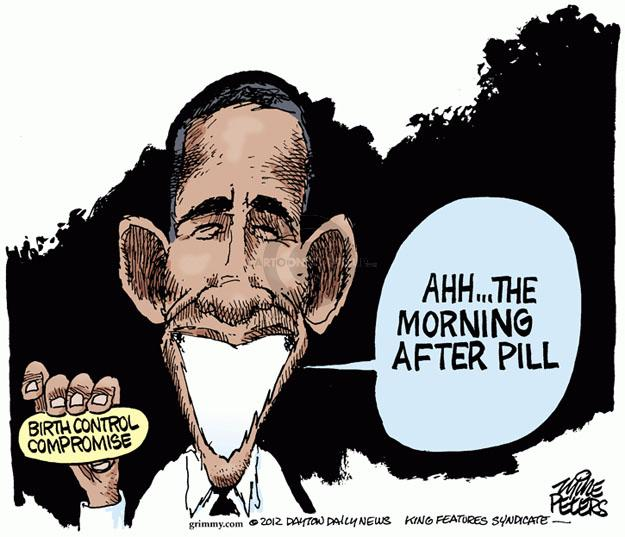 Cartoonist Mike Peters  Mike Peters' Editorial Cartoons 2012-02-10 Obama health care