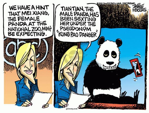 Cartoonist Mike Peters  Mike Peters' Editorial Cartoons 2013-08-02 city