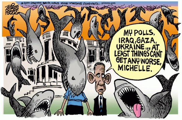 Cartoonist Mike Peters  Mike Peters' Editorial Cartoons 2014-07-31 Barack Obama approval rating