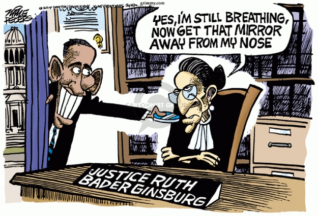 Mike Peters  Mike Peters' Editorial Cartoons 2014-08-01 Supreme Court