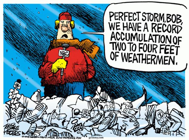 Cartoonist Mike Peters  Mike Peters' Editorial Cartoons 2015-01-28 storm