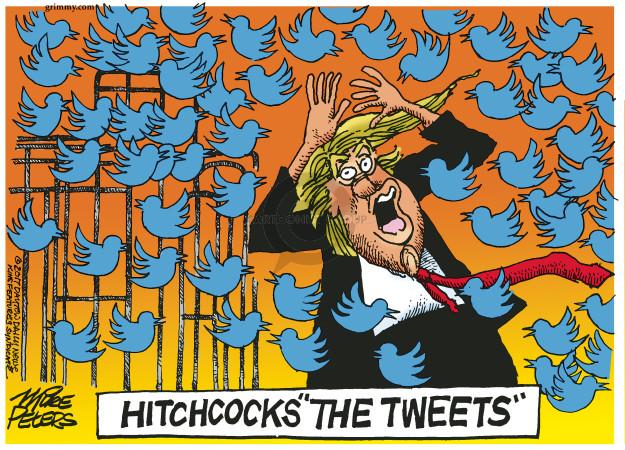 Mike Peters  Mike Peters' Editorial Cartoons 2017-06-17 social media