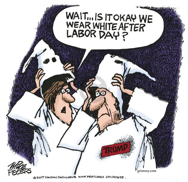 Mike Peters  Mike Peters' Editorial Cartoons 2017-09-17 racism