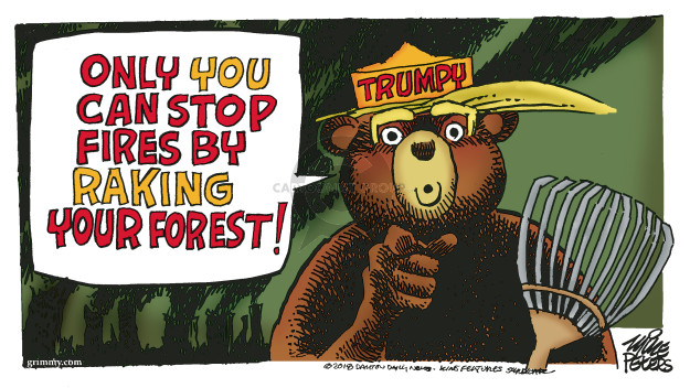 Only you can stop fires by raking your forest. Trumpy.