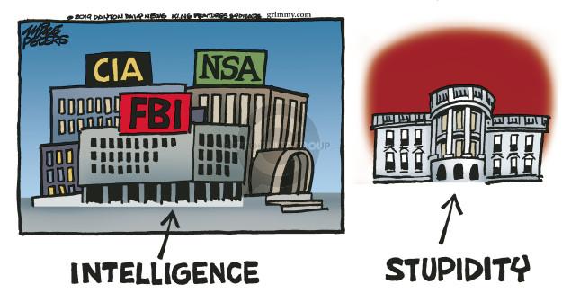 Cartoonist Mike Peters  Mike Peters' Editorial Cartoons 2019-02-01 FBI