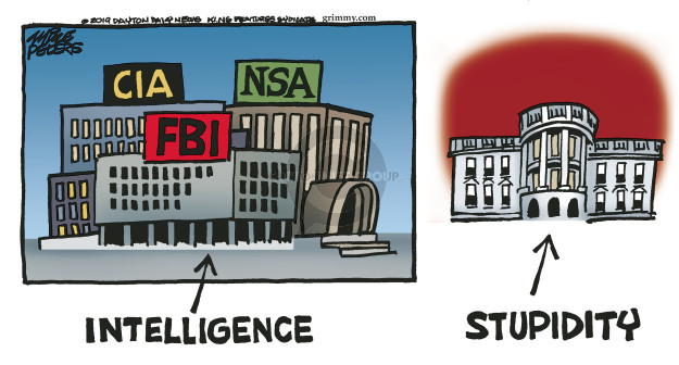 CIA. NSA. FBI. Intelligence. Stupidity.