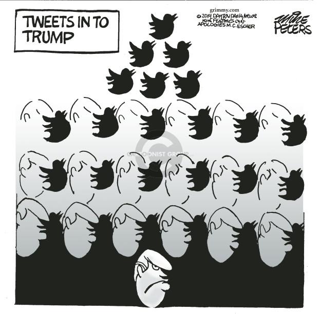 Tweets in to Trump.