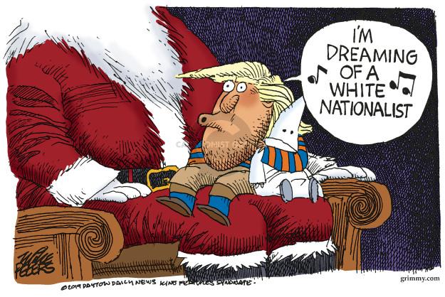 Mike Peters  Mike Peters' Editorial Cartoons 2019-11-20 racism