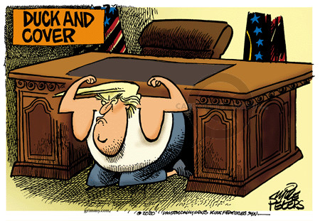 Mike Peters  Mike Peters' Editorial Cartoons 2020-01-08 White House