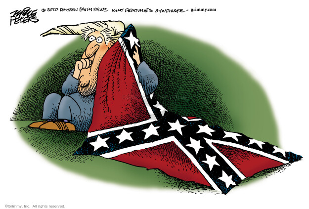 Mike Peters  Mike Peters' Editorial Cartoons 2020-06-17 American History