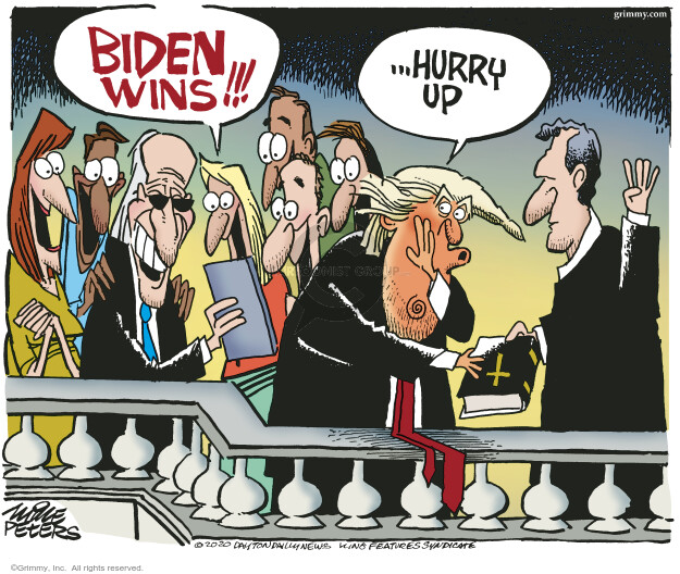 Mike Peters  Mike Peters' Editorial Cartoons 2020-11-06 presidential election