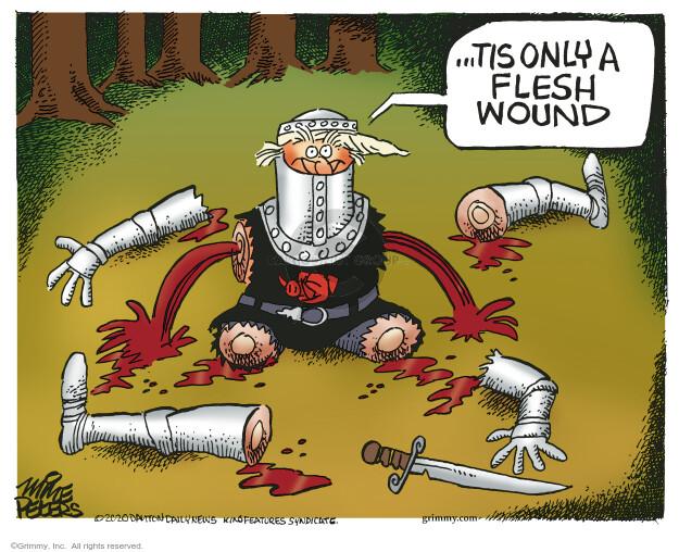 Mike Peters  Mike Peters' Editorial Cartoons 2020-12-14 'tis