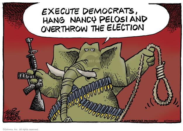 Mike Peters  Mike Peters' Editorial Cartoons 2021-01-29 presidential