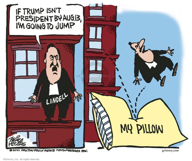 Mike Peters  Mike Peters' Editorial Cartoons 2021-07-08 presidential