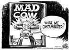 Cartoonist Mike Peters  Mike Peters' Editorial Cartoons 2003-12-26 worry