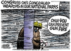 Cartoonist Mike Peters  Mike Peters' Editorial Cartoons 2009-05-22 fire