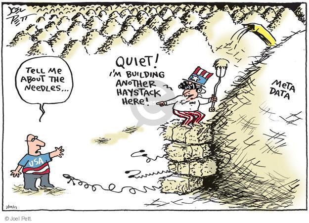 Joel Pett  Joel Pett's Editorial Cartoons 2013-07-10 security