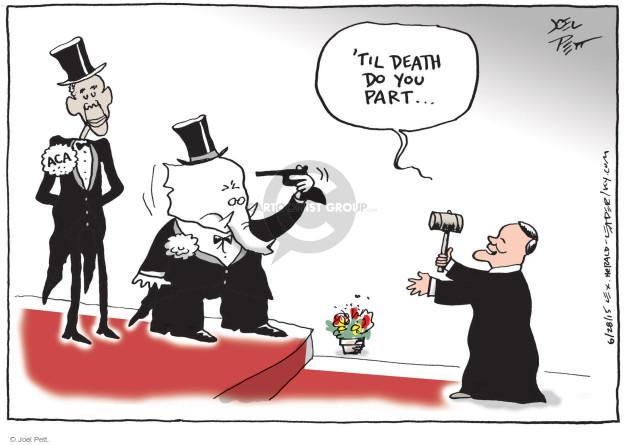 Cartoonist Joel Pett  Joel Pett's Editorial Cartoons 2015-06-28 decision