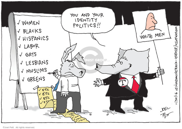 Joel Pett  Joel Pett's Editorial Cartoons 2016-11-30 voter identification