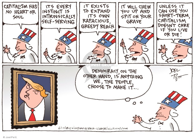 Joel Pett  Joel Pett's Editorial Cartoons 2018-06-12 democracy