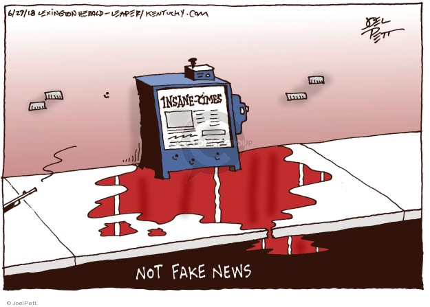 Cartoonist Joel Pett  Joel Pett's Editorial Cartoons 2018-06-29 fake news