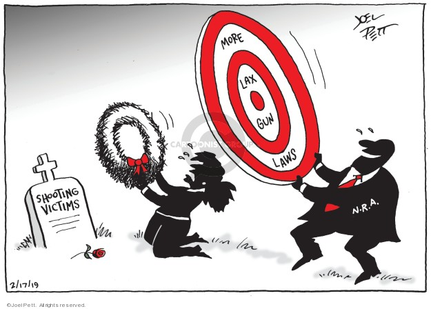 Joel Pett  Joel Pett's Editorial Cartoons 2019-02-17 gun control law