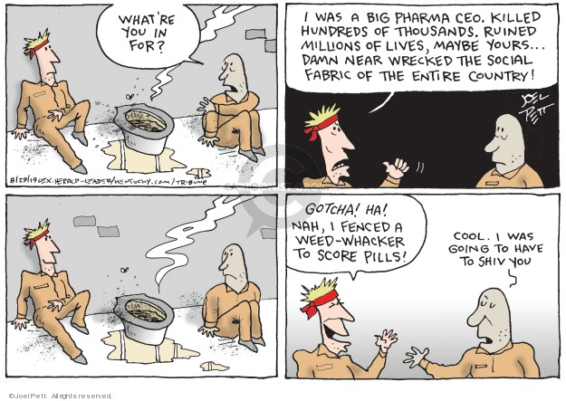 Cartoonist Joel Pett  Joel Pett's Editorial Cartoons 2019-08-29 country