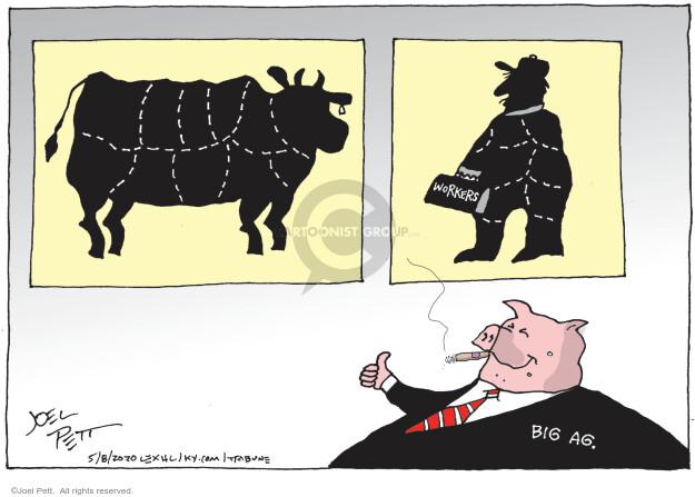 Cartoonist Joel Pett  Joel Pett's Editorial Cartoons 2020-05-08 coronavirus