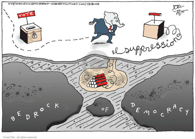Joel Pett  Joel Pett's Editorial Cartoons 2020-07-29 democracy