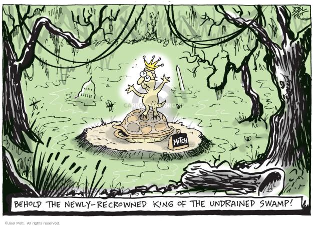Joel Pett  Joel Pett's Editorial Cartoons 2020-11-05 senator