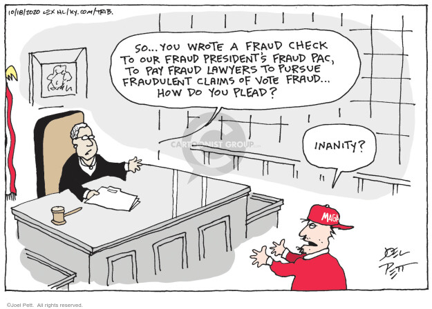 Joel Pett  Joel Pett's Editorial Cartoons 2020-11-18 voter fraud