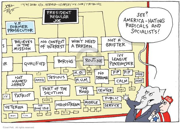 Joel Pett  Joel Pett's Editorial Cartoons 2020-12-04 presidential candidate