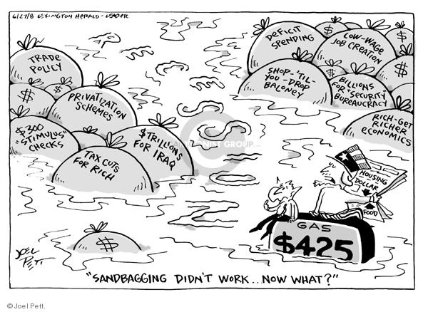 Joel Pett  Joel Pett's Editorial Cartoons 2008-06-27 $300