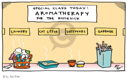 Special Class Today:  Aromatherapy for the Homesick.  Laundry.  Cat Litter.  Leftovers.  Garbage.